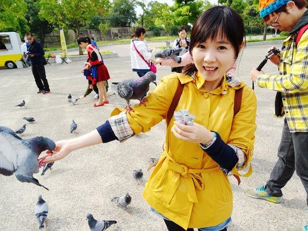 【大阪】大阪城公園一點也不無聊餵鴿子超好玩+花費